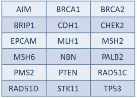 panel genes hereditario cáncer ginecológico mama ovario